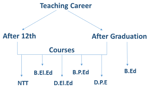 teaching_career