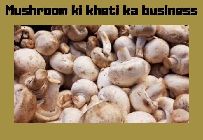 mushroom_ki_kheti