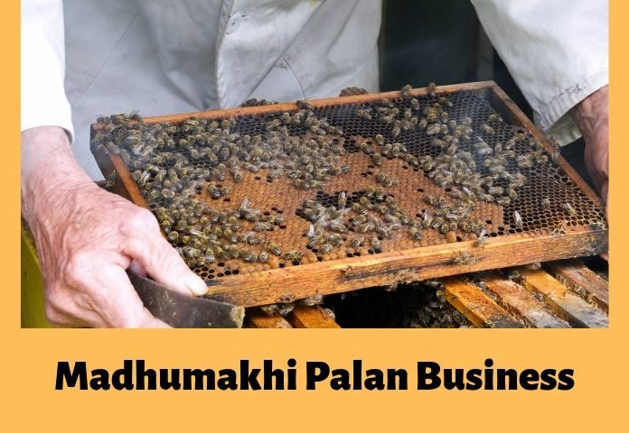 madhumakhi palan ya bee farming business in hindi ki puri jaankari