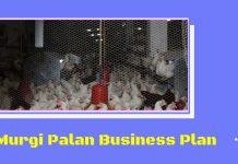murgi palan, kukut palan kaise kare aur jaane poultry farming business in hindi