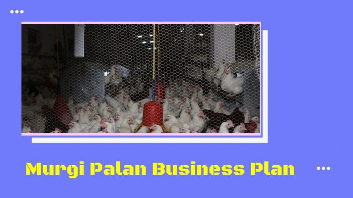 murgi palan, kukut palan kaise kare aur jaane poultry farming business in hindi